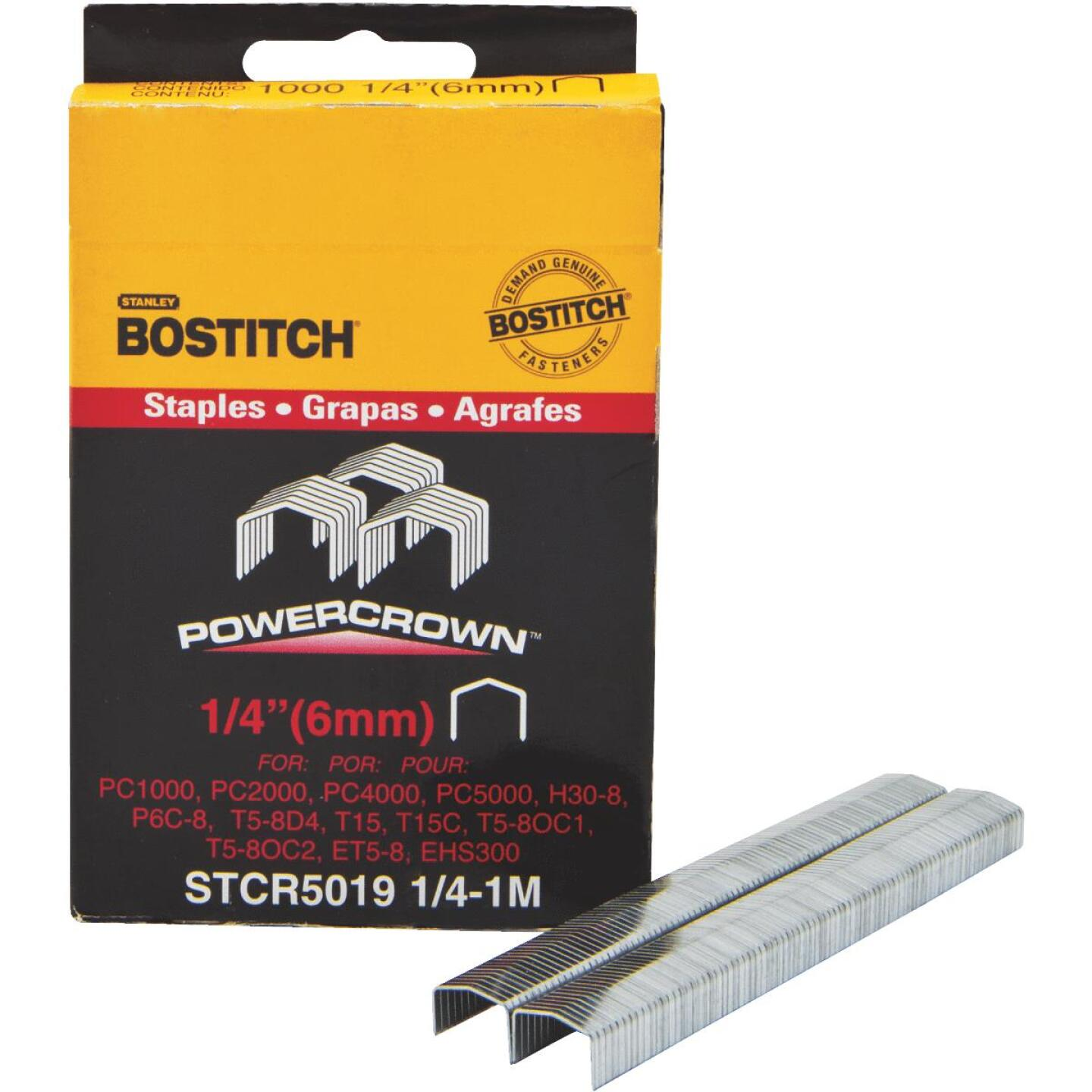 Bostitch Powercrown Hammer Tacker Staple, 1/4 In. (1000-Pack) Image 1
